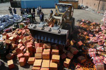 ۷.۵تن انواع میوه قاچاق در مشهد امحاءشد