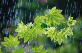 ۴ درصد کاهش بارندگی در کشور/ ۲۴۸.۸۵۲ میلیارد مترمکعب بارش از اول مهر تا پایان ۲۳ اسفند