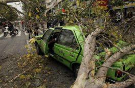 وقوع ۶۰ مورد حادثه در طوفان پایتخت/ مصدوم و فوتی نداشته ایم