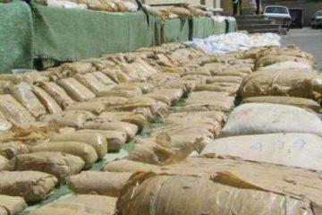 ۶۱۵۰ کیلوگرم مواد مخدر در بوشهر کشف شد