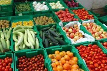 ۶۹ میلیون دلار محصول کشاورزی از آذربایجان شرقی صادر شد